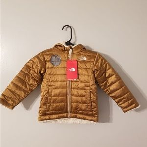 New north face metallic copper insulated jacket 3T